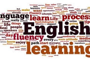 Neden İngilizce